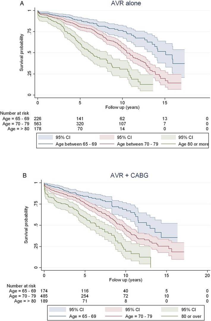 heart valve replacement surgery survival rate elderly