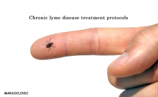 Chronic lyme disease treatment protocols